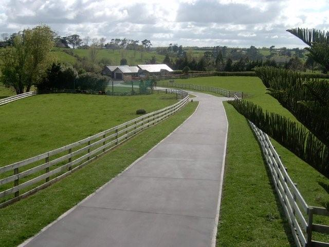 Concrete driveway cost in auckland nz for Temperature to pour concrete driveway